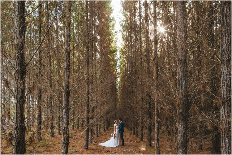 Eling Forest Wedding Photos_0116