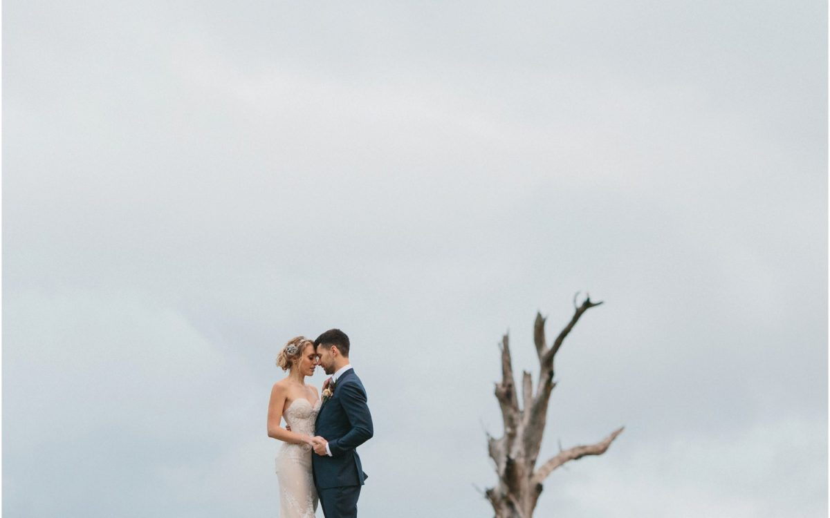 Summerlees Sutton Forest Wedding     Caitlin + Tim