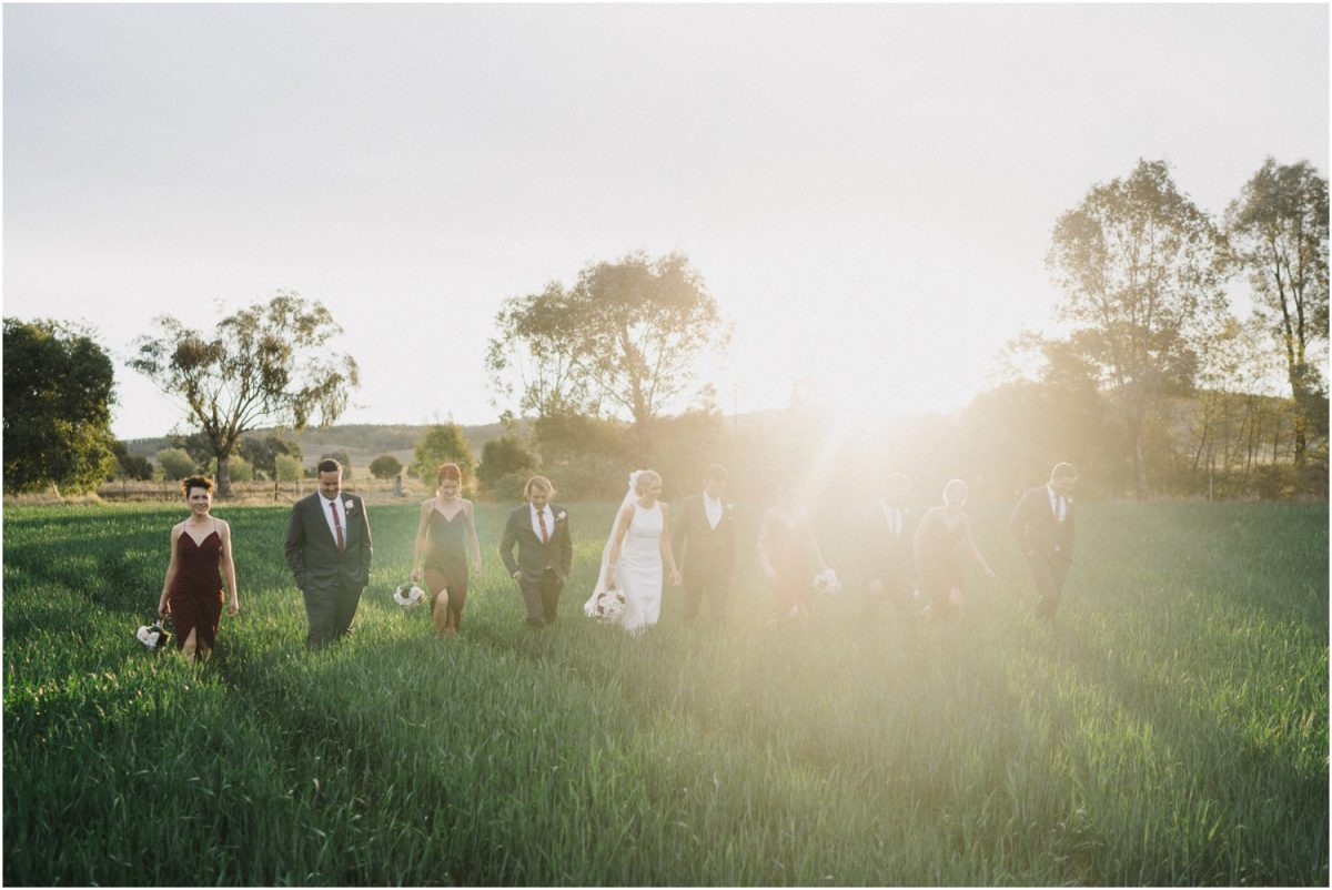 A bridal party in a field of wheat after their Canowindra wedding