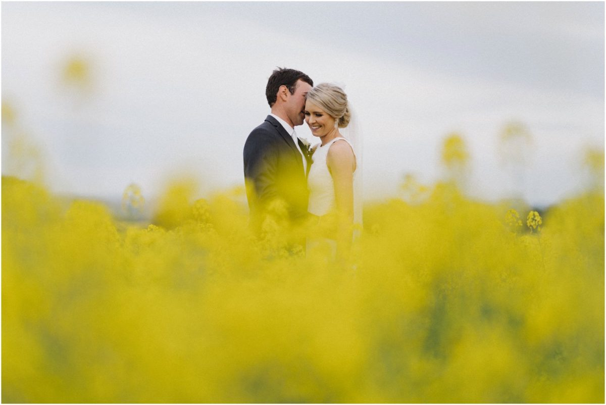 A bride and groom in a field of canola after their Canowindra wedding