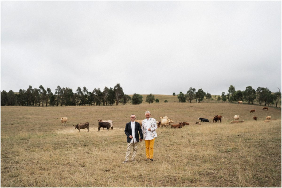 A newly married pair of grooms stand in a field with cows in the background after their Bendooley Stables wedding