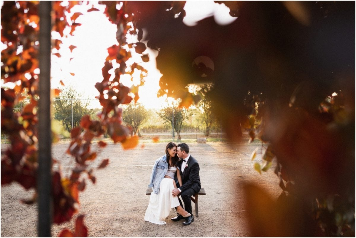 A bride and groom sit on a chair in front of some autumn leaves after their Borambola Wines wedding